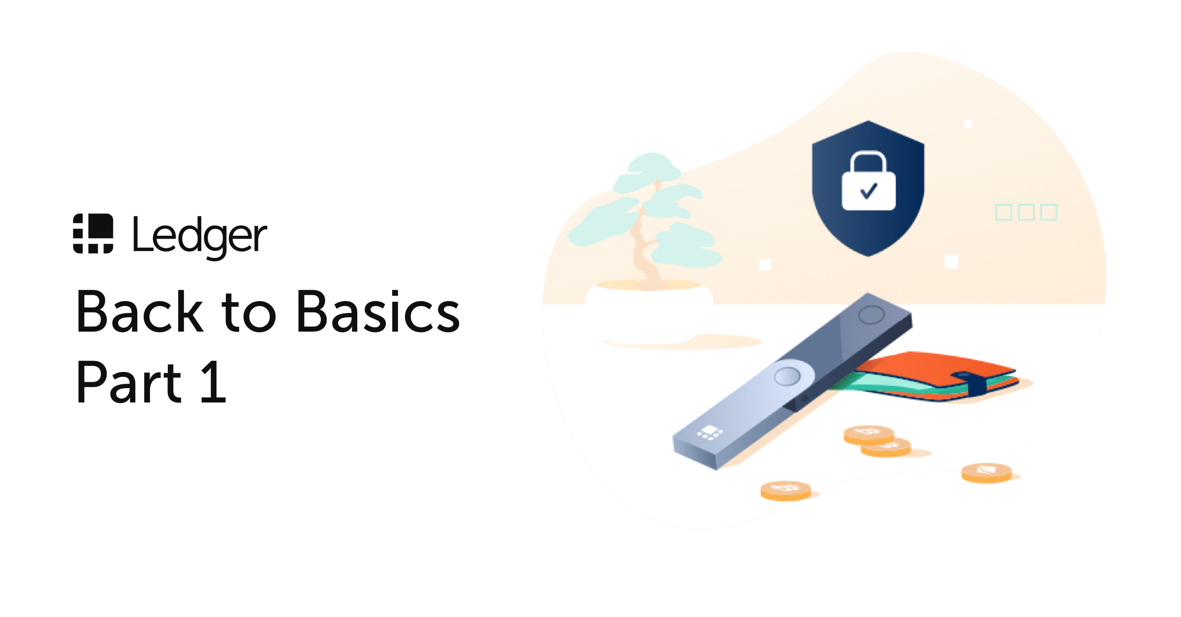 Ledger Back to Basics: Where are my Coins?