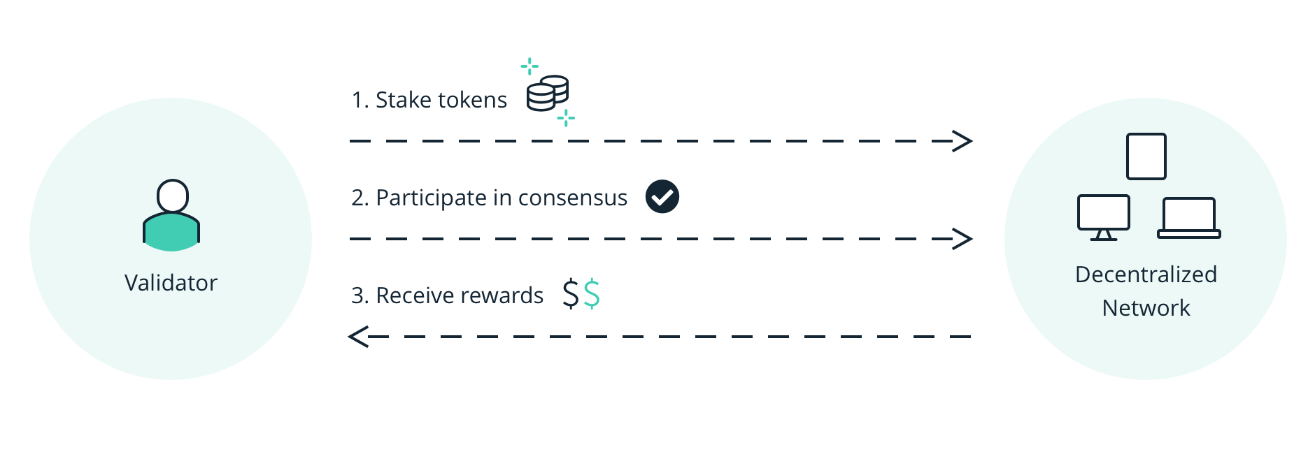 Validators and rewards