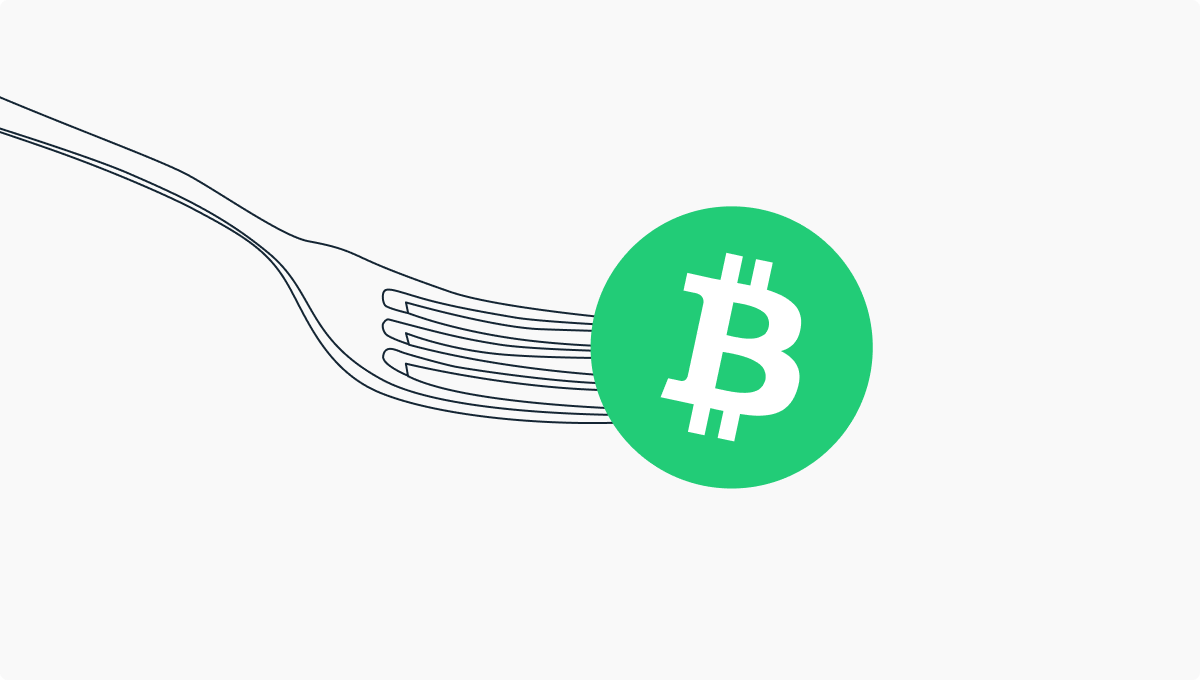 Bitcoin Cash Fork, 15 November 2020: What it Means for You